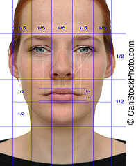 A so-called perfect face, the expected result of cosmetic surgery. The lines show the perfect proportions of the human face.