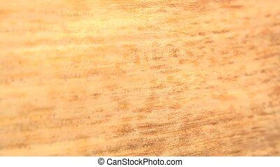 (Perfect Loop) Quarter Wood Cut - Closer look of quarter cut...