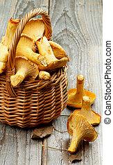 Raw Chanterelles - Perfect Raw Chanterelles in Wicker Basket...
