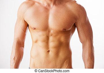 perfect, staand, close-up, torso., jonge, gespierd, tegen, achtergrond, gekregen, witte , hij, torso, man