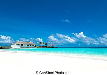 Perfect tropical island paradise beach Maldives