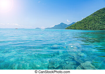 Perfect tropical turquoise clear ocean water