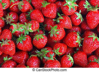 perfecto, fresco, maduro, fresa