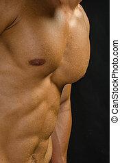 perfeitos, músculos, abdominal