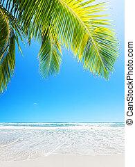 perfetto, composition., spiaggia., verticale, sabbia, bianco