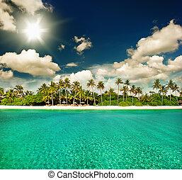 perfetto, isola, soleggiato, paradiso tropicale, spiaggia, cielo