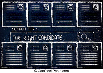 perfetto, ricerca, candidato, cv, database