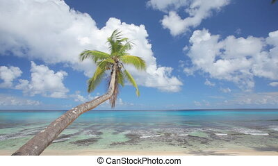perfetto, spiaggia, audio