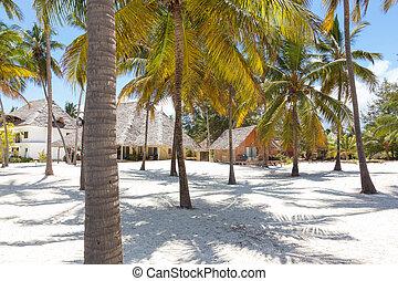 perfetto, spiaggia, paje, tanzania, zanzibar, bungalow, bianco, sabbioso