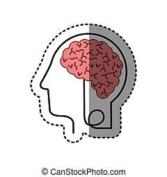 perfil, cabeça, silueta, adesivo, cérebro, human