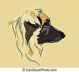 perfil, pastor, cão, mistura