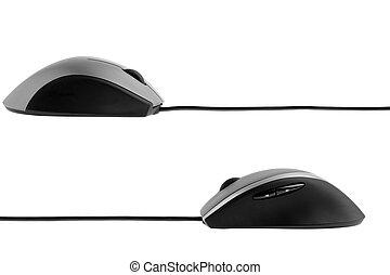 perfil, ratón de la computadora, vista