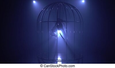 Performance of an aerial gymnast on a hoop in a cage on the stage with spotlights. Blue smoke background. Silhouette