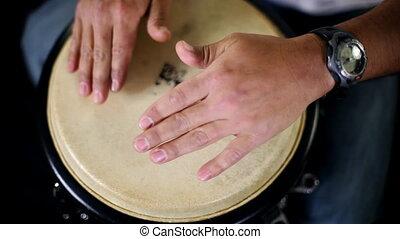 performing., agrafe, musicien, inclut, élevé, percussion, audio, qualité