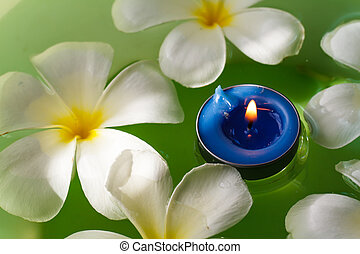 perfumado, flores, plumeria, velas
