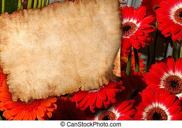pergaminho, ligado, flores, retro, letra, fundo