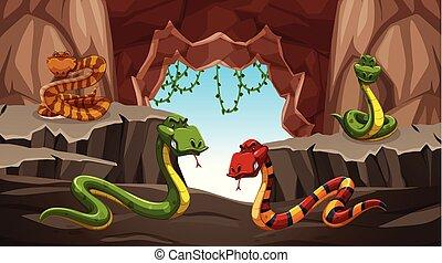 pericoloso, caverna, serpente