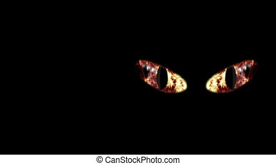 """Perilous Flaming Black Cat Eyeballs"" - ""A petrifying 3d..."