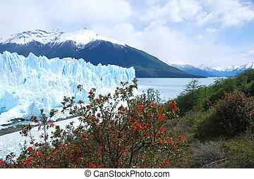 Perito Moreno Glacier in Patagonia - View of Perito Moreno...