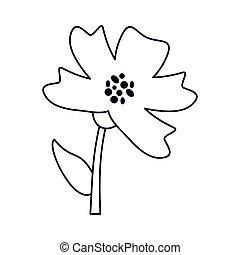 periwinkle flower decoration line vector illustration eps 10