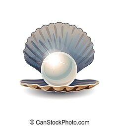 perla, brillante, abierto, concha marina
