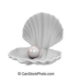 perla, dentro, concha marina