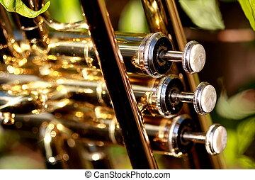 perla, válvulas, de, un, trompeta