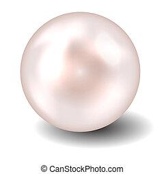 perla, vector, ilustración