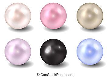 perla, vektor, ilustrace