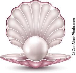 perle, schale