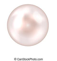 perle, vektor, abbildung