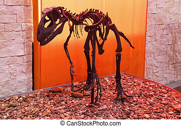 PERM, RUSSIA - APR 4, 2015: Skeleton of dinosaur in Museum of Local History
