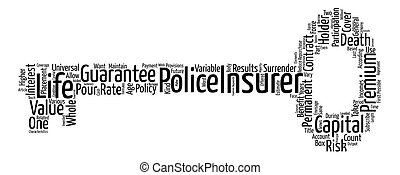 Permanent Life Insurance text background word cloud concept