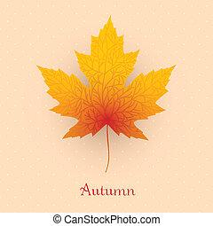 permesso, autunno, bandiera, acero
