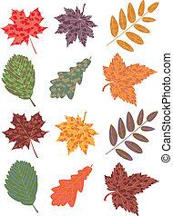 permesso, autunno, set, vettore, colorito