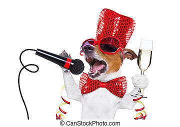 perro, año nuevo, celberation, feliz