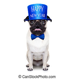perro, año, nuevo, feliz