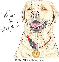 perro cobrador, labrador, campeón, casta, vector, perro