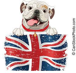 perro presa inglés