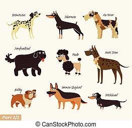 perro, razas