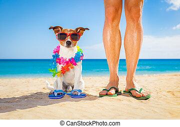 perro, y, dueño, días de fiesta de verano