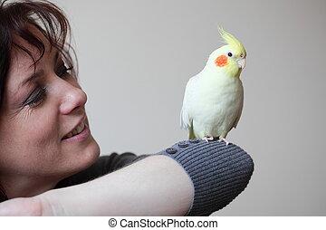 perroquet, et, femme