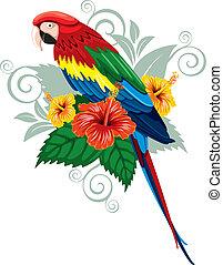 perroquet, et, fleurs tropicales