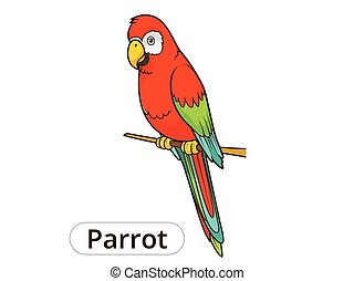perroquet, vecteur, dessin animé, illustration