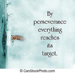 perseverança, aproximadamente, image., pardal, cyanotype, ...