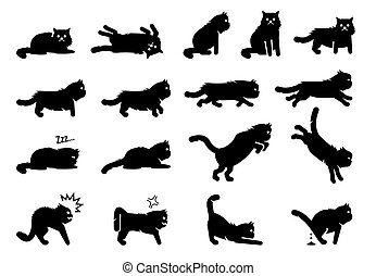 Persian cat poses, postures, emotions, and actions icons.