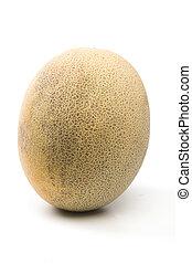 persian melon patelquat