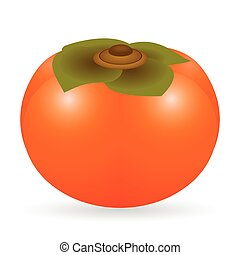 Persimmon vector isolated