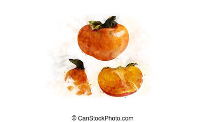 Persimmon watercolor drawing animation - Persimmon...