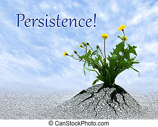 The power of persitence, inspiring conceptual image with added quote.